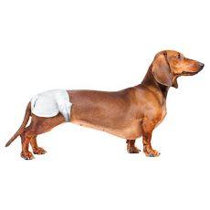 Pieluchy dla psów - 12 sztuk, wielkość S-M