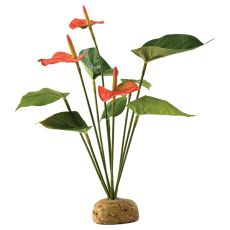 Exo Terra roślina do terrarium - Anthurium bush, 30cm