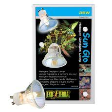 Exo Terra Halogen Daylight Lamp - żarówka 35W