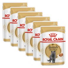 Royal Canin British Shorthair - saszetka, 6 x 85g