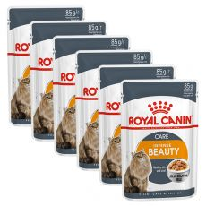 Royal Canin Intense BEAUTY in Jelly 6 x 85g - w galarecie