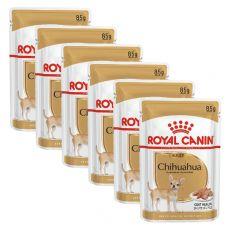 Royal Canin Chihuahua Adult - 6 x 85g - saszetka