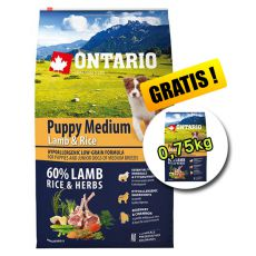 ONTARIO Puppy Medium Lamb & Rice 6,5kg + 0,75kg