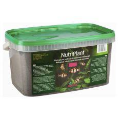 NutriPlant substrat dla roślin akwaryjnych, 5l