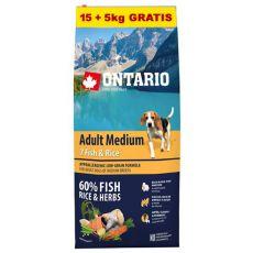 ONTARIO Adult Medium 7 Fish & Rice 15+5kg ZA DARMO