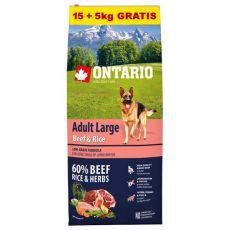 ONTARIO Adult Large Beef & Rice 15+5kg ZA DARMO