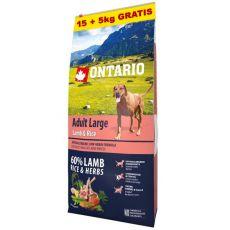 ONTARIO Adult Large - lamb & rice 15+5kg ZA DARMO