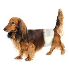 Pieluchy dla psa S-M, 12 szt.