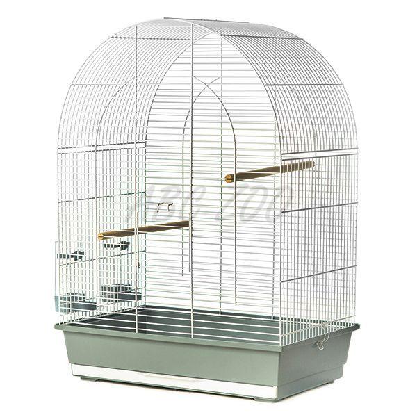 Lusi Iii Klatka Dla Papug 54 X 34 X 75 Cm Abc Zoo