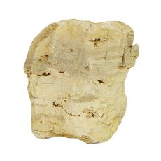 Kamień do akwarium Petrified Stone M 13 x 9 x 15 cm