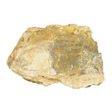 Kamień do akwarium Petrified Stone M 21 x 7 x 13 cm