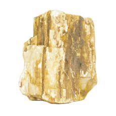 Kamień do akwarium Petrified Stone M 9 x 6 x 11 cm