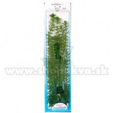 Cabomba caroliniana ( Green Cabomba) - plastikowa roślina do akwarium Tetra 46 cm, XXL