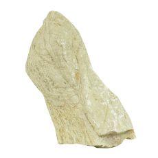 Kamień do akwarium Grey Luohan Stone M 11 x 5 x 17 cm