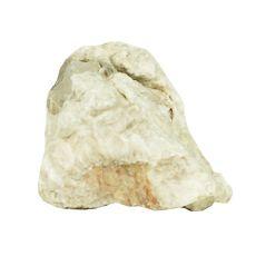 Kamień do akwarium Grey Luohan Stone M 9 x 6 x 7 cm