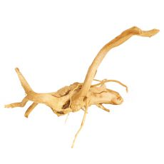 Korzeń do akwarium Cuckoo Root - 26 x 16 x 20 cm