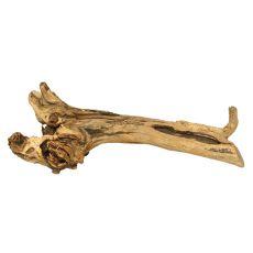 Korzeń do akwarium Fine Sinking Wood - 51 x 19 x 16 cm