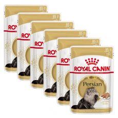 Royal Canin Adult PERSIAN - saszetka, 6 x 85 g