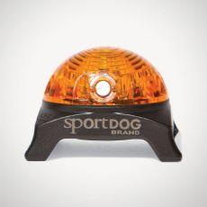 Oświetlenie na obrożę SportDog Beacon, żółte