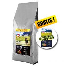 ONTARIO Adult Mini Lamb & Rice 7,5 kg + 0,75 kg GRATIS
