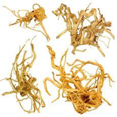 "Korzeń do akwarium Cuckoo Root ""EXCLUSIV"" 20 - 50 cm"