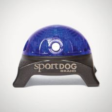 Oświetlenie na obrożę SportDog Beacon, niebieskie