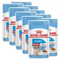 Saszetka Royal Canin Medium Puppy 10 x 140 g