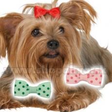Kolorowa kokardka dla psa 3,5 cm