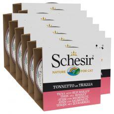 Schesir cat tuńczyk i barwena w galarecie 12 x 85 g