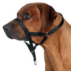 Szelki do treningu dla psa - M, 27 cm