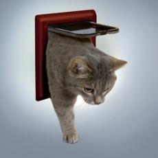 Drzwiczki dla kota, dwufunkcyjne - brązowe
