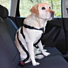 Samochodowe szelki bezpieczeństwa dla psa - L, 70 - 90 cm