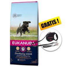 Eukanuba Developing Junior Large Breed 15 kg