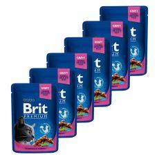 Saszetka BRIT Premium Cat Chicken & Turkey 6 x 100 g
