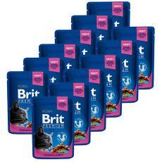 Saszetka BRIT Premium Cat Chicken & Turkey 12 x 100 g