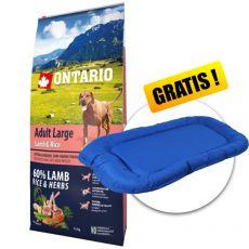 ONTARIO Adult Large - lamb & rice 12kg + PREZENT
