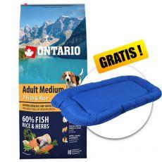 ONTARIO Adult Medium 7 Fish & Rice 12kg  + PREZENT