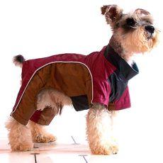 Skafander dla psa - bordowo-złoty, XS