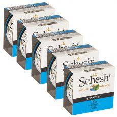 Schesir dog tuńczyk w galarecie 5 x 150 g