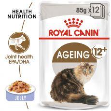 Royal Canin AGEING + 12 - saszetka 12 x 85g