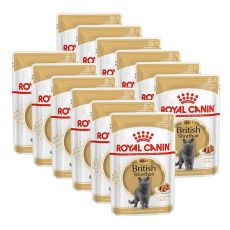Royal Canin British Shorthair - saszetka, 12 x 85g
