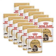 Royal Canin Maine Coon - saszetka, 12 x 85g