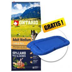 ONTARIO Adult Medium Lamb & Rice 12kg  + PREZENT
