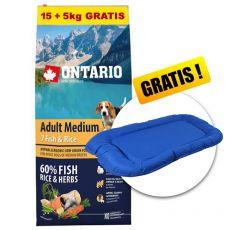ONTARIO Adult Medium 7 Fish & Rice 15+5kg ZA DARMO+ PREZENT