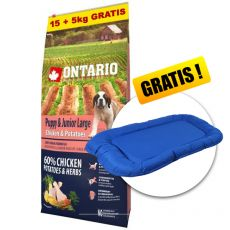 ONTARIO Puppy & Junior Large - chicken & potatoes 15+5kg ZA DARMO + PREZENT