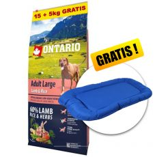 ONTARIO Adult Large - lamb & rice 15+5kg ZA DARMO + PREZENT