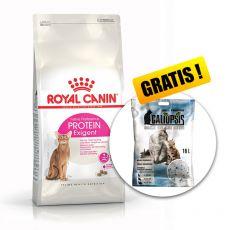 Royal Canin Protein Exigent 10 kg + PREZENT