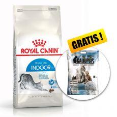Royal Canin INDOOR 27 - karma dla kotów żyjących w domu 10kg + PREZENT