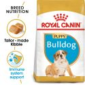 ROYAL CANIN ANGIELSKI BULDOG JUNIOR  - 12 kg