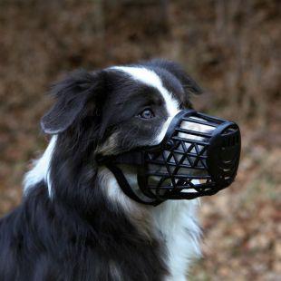 Kaganiec dla psa, plastikowy, rozmiar M/L, 26 cm